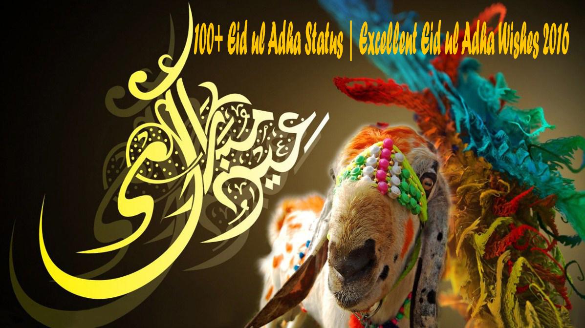 100 Eid Ul Adha Status Excellent Eid Ul Adha Wishes 2017 Status